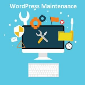WordPress WebSite Management | Pinellas WordPress
